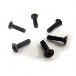 Flat Head Screws 3X12 6P